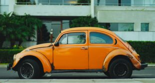 shallow focus photography of orange Volkswagen Beetle photo