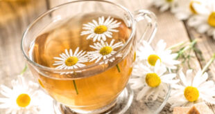 Amazing Health Benefits of Chamomile Tea