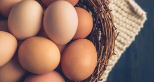 Amazing Health Benefits of Eggs